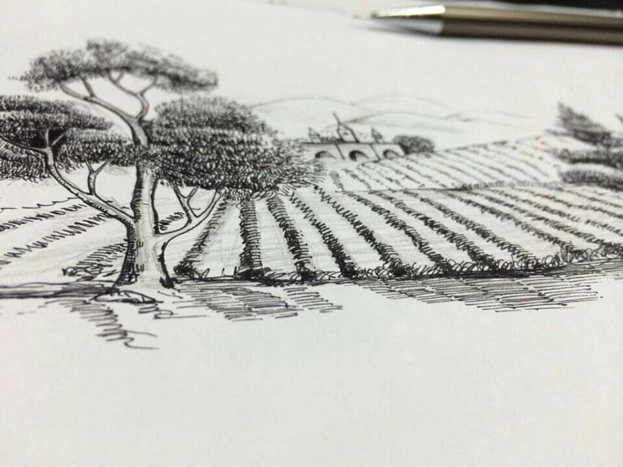 葡萄酒红酒的手绘酒庄酒标图标是如何设计诞生的?