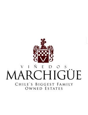 【智利】玛吉戈酒庄(Viñedos Marchigue)